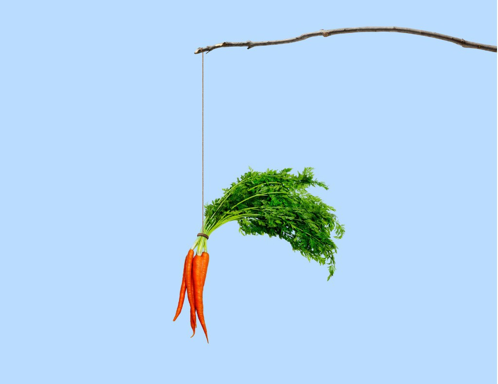 The next step in understanding motivation involves figuring out our motivation direction. Below you'll see an image of a stick and a carrot. This image depicts motivation direction. Motivation direction is when we're either motivated towards what we do want, which is pleasurable (carrot) or away from what we don't want, which is painful (stick).